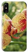 Yellow And Red Spotted Phalaenopsis Orchids IPhone Case