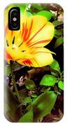 Yellow And Red Tulip IPhone Case