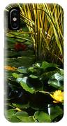Yellow And Red Water Lilies In A Pond IPhone Case