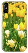 Yellow And White Tulips In Canberra In Spring IPhone X Case