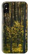 Yellow Autumn Trees In Forest IPhone Case