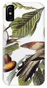 Yellow-billed Cuckoo IPhone Case