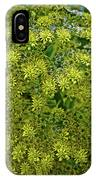 Yellow Blossoms Of Green Aeonium In Huntington Desert Garden In San Marino-california  IPhone Case