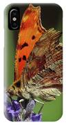Yellow Butterfly No.2 IPhone Case