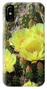 Yellow Cactus Blooms IPhone Case
