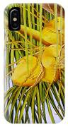 Yellow Coconuts- 01 IPhone Case