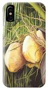 Yellow Coconuts From The Tropics  IPhone Case