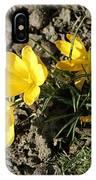 Yellow Crocus IPhone Case