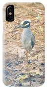 Yellow Crowned Night Heron Along The Tidal Creek IPhone Case