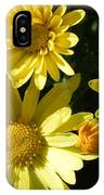 Yellow Daisies IPhone X Case