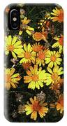 Yellow Flowers At Boyce Thompson Arboretum IPhone Case