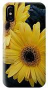 Yellow Gerbera Daisies IPhone Case