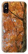 Yellow Maple Tree IPhone Case