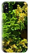 Yellow Sedum At Pilgrim Place In Claremont-california IPhone Case