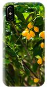 Yellow Seeds IPhone Case