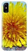 Yellow Spring IPhone Case