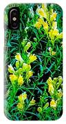 Yellow Wild Flowers In Late Summer IPhone Case