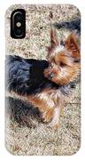 Yorkshire Terrier Dog Pose #9 IPhone Case
