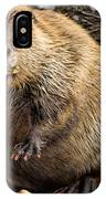 You Caught Me IPhone Case