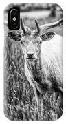 You Looking At Me? IPhone Case