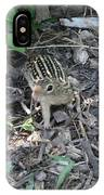 You There - Ground Squirrel IPhone Case