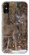 Young Deer IPhone Case