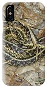 Young Eastern Garter Snake - Thamnophis Sirtalis IPhone Case
