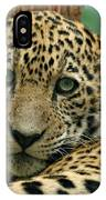 Young Jaguar IPhone Case