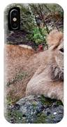 Young Lion  IPhone Case