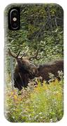 Young Male Moose IPhone Case