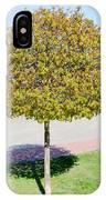 Young Maple Tree IPhone Case