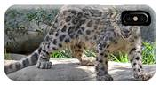 Young Snow Leopard IPhone Case