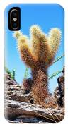 Young Teddy Bear Cholla IPhone Case