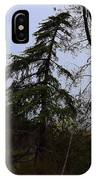Yucca Filamentosa Rainy Day In Malibu IPhone Case
