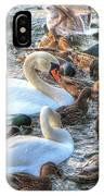Yury Bashkin Ducks Stockholm  IPhone Case