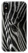 Zebra 3 IPhone Case
