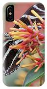 Zebra Butterfly With Blue Eyes IPhone Case
