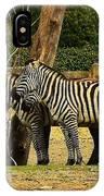 Zebra IPhone Case