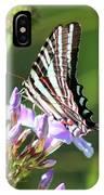 Zebra Swallowtail Butterfly On Phlox IPhone Case