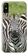 Zebra10 IPhone Case