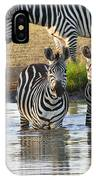 Zebra15 IPhone Case