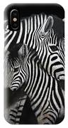 Zebras IPhone Case