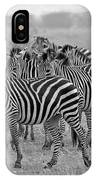 Zebras On The March IPhone Case