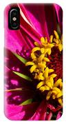 Zinnia In Evening Light IPhone Case