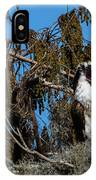 Zombie Osprey Crying For Brains IPhone Case