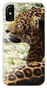 Zoo 2015 006 IPhone Case
