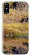 Moose At Green Pond IPhone Case