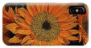 10-20-2008img0638a IPhone Case