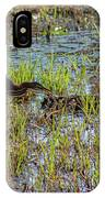 Green Heron Looking For Food IPhone Case