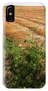 Field With Brown Cut Flax In Rows Drying In The Sun IPhone Case